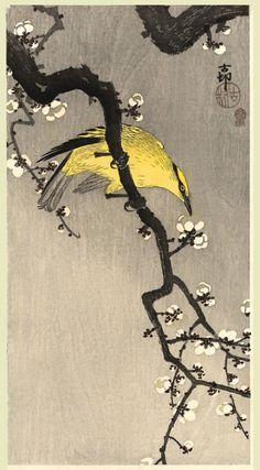 小原 古邨 (Ohara Koson)의 작품 - 3 中 2 Eagle under Snow Egret on Snowy Tree Egrets in Snow...