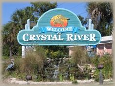 Crystal River, Fl