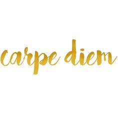 Carpe Diem sticker. gold sticker