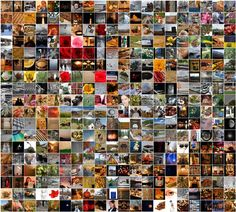 McEnaney-365-2012.jpg
