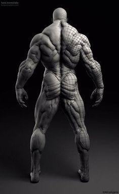 48a1765b224ead74bbcb10d73c4e360a--zbrush-anatomy-human-anatomy.jpg (440×712)