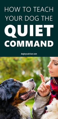 Does your dog bark at other dogs? Learning how to stop a dog from barking doesn't have to be a stressful process. Try this simple 3 step method to stop excessive barking and teach your dog to be quiet. Surprised Dog, Stinky Dog, Mountain Dogs, Bernese Mountain, Dog Breath, Stop Dog Barking, Dog Smells, Dog Health Care, Dog Hacks