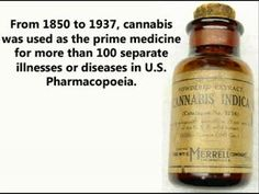 Cannabis Cures Cancer and The Government Has Known Since 1974 | Spirit Science
