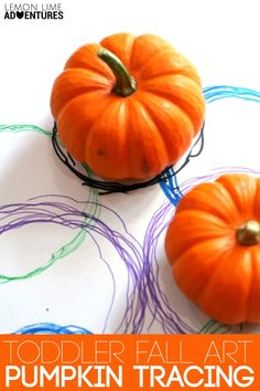 If your kids love mini pumpkins as much as mine do, they will love this simple toddler fall art project of pumpkin tracing. Fall Preschool Activities, Preschool Crafts, Toddler Activities, Halloween Activities, Motor Activities, Kids Crafts, Autumn Art, Autumn Theme, Theme Halloween