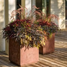 Today's Perfect Pairin Flower Containers, Proven Winners, Fall Planters, Corten Steel, Glass Garden, Healthy Options, Container Gardening, Earthy, Pots