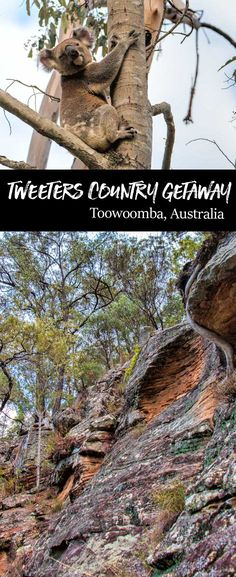 Exploring the National Parks around Tweeters Country Getaway. South Queensland country, Australia