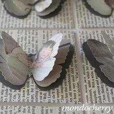 A small bite of mondocherry: new grey butterflies...