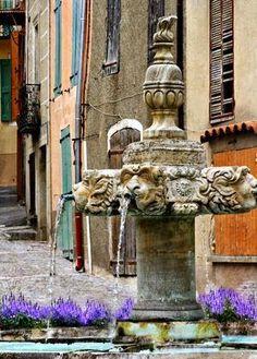 Valensole , Provence..