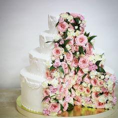 """доброе утро.обожаю эти торты с живыми цветами. Вот я и профессию флориста почти освоила.такого еще не было: бело-пудрово -розово -сиреневого. Все в кондитерской ходили вокруг и приговаривали: """" какой же он красивый..."""". вес тортика 10 кг( 3 этажа), внизу фальш ярус#свадебныйторт #свадьба #wedding #weddingcake #домашниеторты #когдавкусно #икрасиво #olga_lakomka"""