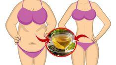 O Suco Detox de Limão Para Queimar Gordura Abdominal é uma boaopçãode suco saudável, pois, além de ajudar aemagrecercom saúde, o Suco Detox de Limãooferece os nutrientes essenciais para saúde geral do corpo. OSuco Detoxé