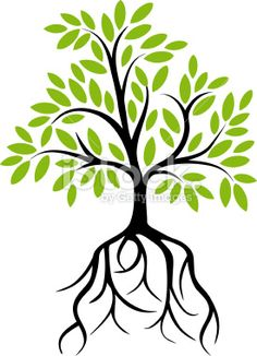 I am a luxuriant olive tree with deep roots.       PS 52:8