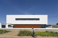 Nature-Friendly DT House by Jorge Graca Costa 2