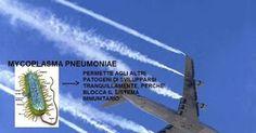 I patogeni inalati dalle scie chimiche comportano un rischio alla salute della…