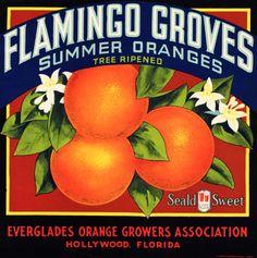 Flamingo Groves Citrus Fruits. #crateart.jpg