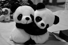 Panda Friends shared by Sara on We Heart It Cute Panda Baby, Baby Panda Bears, Cute Baby Animals, Teddy Bears, Cute Panda Wallpaper, Bear Wallpaper, Plush Animals, Stuffed Animals, Black And White Tumblr