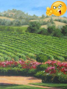 Located in the #Sierra foothills, Alexander Valley #Vineyards gives new life and color to the foothills.