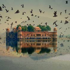 Jal Mahal (Jaipur, India)