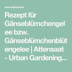 Rezept für Gänseblümchengelee bzw. Gänseblümchenblütengelee   Attensaat - Urban Gardening, Guerilla Gardening, Nachhaltigkeit