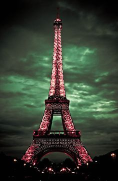 Just once in my life I would like to see the beautiful lights of the Eiffel Tower at night