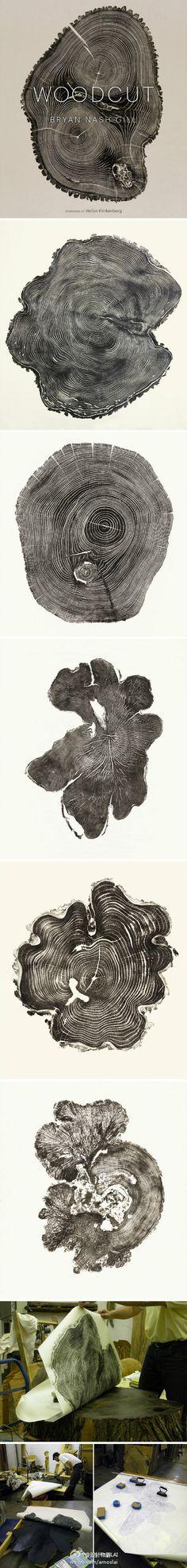 树木的截面/Bryan Nash Gill将自然融入艺术中,以他独特的方式为大家展现英格兰树木的世界。Bryan Nash Gill利用各种树木的截面做成大型的画作。他寻找美丽的树木---那些被损坏的木材,种类包括水曲柳,枫木,柳树。接着在上面涂墨,打印出树木美丽的截面