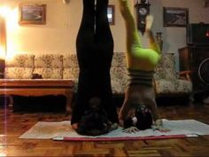 39 best contortion/flexibility images  contortion