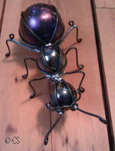 Myran sedd uppifrån.