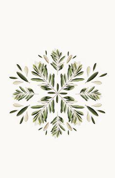Composition avec des branches et feuilles d'olivier
