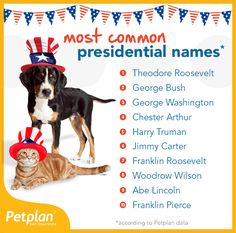Check Out The Top 10 Most Presidential Pet Names Found In The Petplan Pack! Pet Health, Health Care, Your Best Friend, Best Friends, Happy Presidents Day, Franklin Roosevelt, Pet Insurance, Pet Care Tips, Pet Names