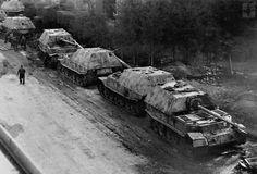 """Panzerjäger - """" Tiger (P) """" - Ferdinand (SD. Kfz. 184)"""