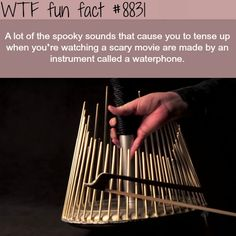 how horror movies make the spooky sounds wtf fun Wow Facts, Wtf Fun Facts, True Facts, Strange Facts, Cool Random Facts, Funny Weird Facts, Weird History Facts, Scary Facts, Random Things