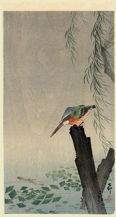 JAPAN PRINT GALLERY: Kingfisher / Koson