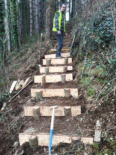 Landscape Stairs, Landscape Design, Outdoor Projects, Garden Projects, Outdoor Steps, Garden Stairs, Hillside Landscaping, Sloped Garden, Woodland Garden