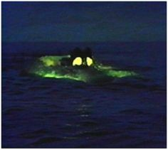"""The Nautilus is the fictional submarine featured in Jules Verne's novels: """"Twenty Thousand Leagues Under the Sea"""" and """"The Mysterious Island"""". Water Crafts, Sea Monsters, Submersible, Leagues Under The Sea, Classic Disney, The Mysterious Island, Jules Verne, Nautilus Submarine, D20 Modern"""