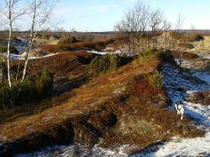 Kalmakaltio, Lapland