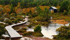 Ranger Hut at Cradle Mountain, Tasmania Travel Around The World, Around The Worlds, Summer Vacation Spots, Photos Of Eyes, Tasmania, Cabins, Ranger, Devil, National Parks