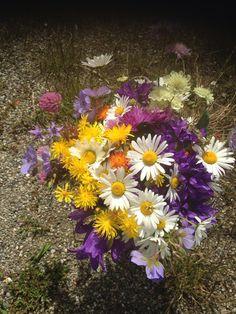 Bouquet, Mountain, Plants, Daisies, Bouquets, Flora, Plant, Floral Arrangements, Nosegay