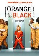 1. kausi DVD tai Bluray