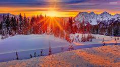 Afbeeldingsresultaat voor sunset snowy forest