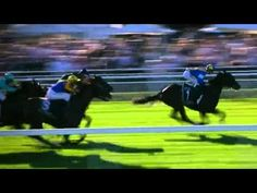 Racing Returns to Royal Randwick by Ben Damon, voiceover by Roy Billing