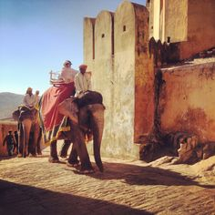 allaboutabroad:  30 Days In India. #day20 #amberfort #jaipur #india #travel #world #backpacker