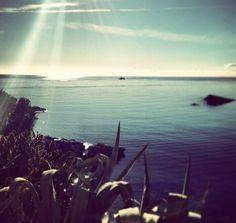 Good morning Ibiza! ☀️