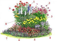 Схема клумбы для бабочек: 1 – дельфиниум, 2 – космея, 3 – бархатцы, 4 – агератум хоустона, 5 – вечноцветущая бегония, 6 –вербена, 7 – петуния, 8 – табак сандера, 9 –георгины. Все цветы — однолетники, исключая дельфиниум Источник: http://diz-cafe.com/ozelenenie/sxemy-posadki-cvetnikov.html