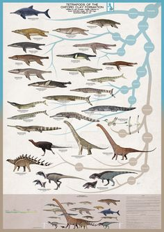 Tetrapods of the Oxford Clay Formation, includes a variety of marine reptiles (like the famous Liopleurodon ferox and several other plesiosaurs, metrior. Tetrapods of the Oxford Clay Formation Dinosaur Sketch, Dinosaur Art, Dinosaur Posters, Cool Dinosaurs, Alien Concept Art, Jurassic Park World, Extinct Animals, Prehistoric Creatures, Weird Creatures