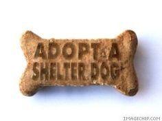 Save a life. Adopt a Shelter Dog.