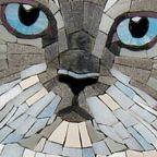 Moonbug Mosaics