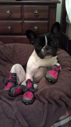 Chillin' in my new boots!