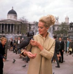 more stars than there are in the heavens tippi hedren Old Hollywood Glamour, Hollywood Actor, Hollywood Actresses, Classic Hollywood, Actors & Actresses, Tippi Hedren, Entertainment Weekly, Heroes Actors, Teresa Wright