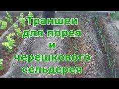 YouTube Youtube, Gardening, Garden Ideas, Garten, Landscaping Ideas, Backyard Ideas, Lawn And Garden, Youtube Movies, Horticulture