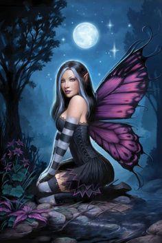 ✯ Night Fairy .. By James Ryman ✯
