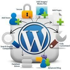 Starting from scratch that is from understanding needs, we as a team build sites. Our main focus remains on best designing and user-friendly development. We don't believe in copying the idea and pasting content. Gleaming Media is a lead word press development agency in India, providing best word press web development services.